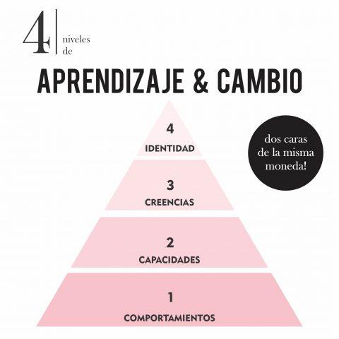 NIVELES_APRENDIZAJE_Y_CAMBIO